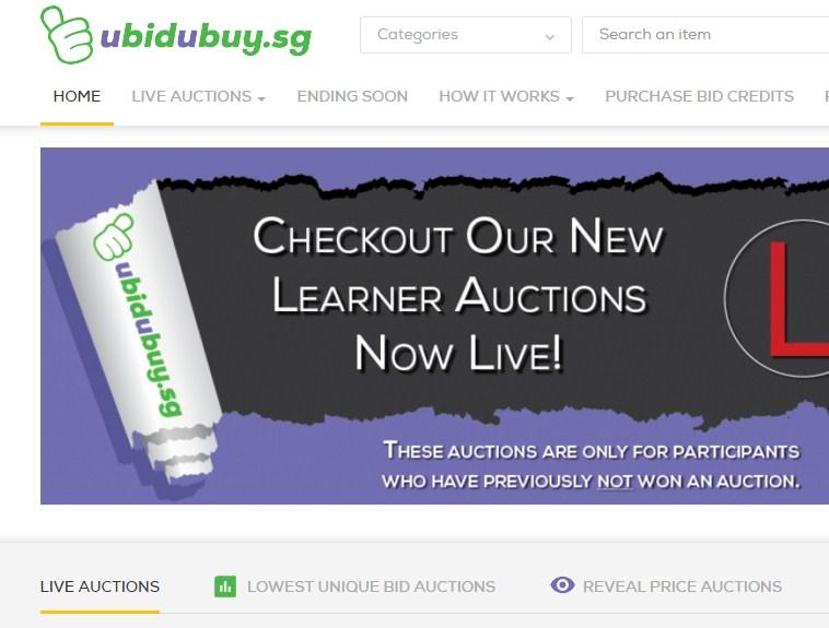 Web Design, Online Auction Software , Blog E-Multitech Solution